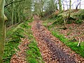 Shropshire Way - geograph.org.uk - 684443.jpg