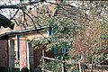 Shvedchina, Ukraine Шведчина - panoramio (1).jpg