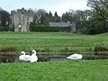 Side view of Galgorm castle, along with the swans that live there for part of the year.jpg