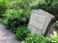 Singapore Botanic Gardens, Evolution Garden 3, Sep 06.JPG