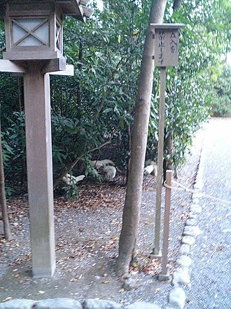 Ise Grand Shrine - A free-range chicken roaming the grounds, considered to be the divine messenger of Amaterasu.
