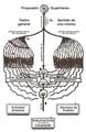 Sistema de Stanislavski (diagrama).png