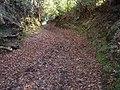 Sluvad Track, Pontypool, Monmouthshire - geograph.org.uk - 92881.jpg