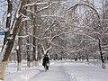 Snow Biker (5606212114).jpg