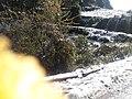 Snow in Kakani 20190228 101736.jpg