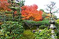 Sokushu-in, Garden -3 (November 2013) - panoramio.jpg