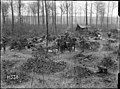 Soldiers in a wood, Louvencourt, France (21582475486).jpg