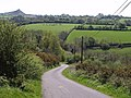 South of Liddaton Down - geograph.org.uk - 421468.jpg