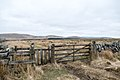 Southern Upland Way out of Sanquhar - panoramio.jpg