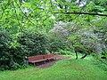 Späth-Arboretum - May 2010 - IMG 8816.JPG