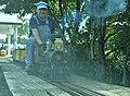 Squirrel Valley Railway 36 (14021582813).jpg