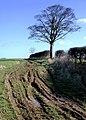Stackhomes, Swine - geograph.org.uk - 1192640.jpg