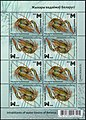 Stamp of Belarus - 2019 - Colnect 875675 - Narrow clawed Crayfish Astacus leptodactylus.jpeg