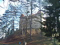 Stari grad Dubovac 01012.JPG