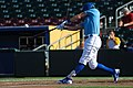 Starling home run swing (36635460802).jpg