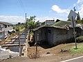 Starr-090803-3604-Musa x paradisiaca-Hawaiian Tall Apple habitat with broken down house-Wailuku-Maui (24344157793).jpg
