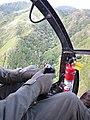 Starr-091112-9481-Aleurites moluccana-aerial view-Waihee-Maui (24621916289).jpg
