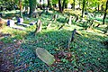 Stary cmentarz żydowski w Cieszynie29.JPG