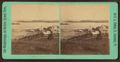 Steam mill and Indian Point, from Prospect Hill, Newport, Vt, by Clifford, D. A., d. 1889.png