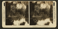 Steamer 'Oklawaha', from Robert N. Dennis collection of stereoscopic views.png
