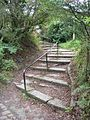 Steps on the Way - geograph.org.uk - 58152.jpg