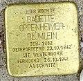 Stolpersteine Gouda Westhaven59 (detail2).jpg