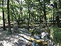 Stream in Higashi Park, Fukuoka 4.jpg