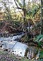 Stream meeting the River Skell - geograph.org.uk - 83727.jpg