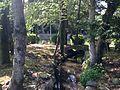 Stream near Shinjiike Pond in Munakata Grand Shrine (Hetsu Shrine).JPG