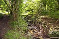 Stream through the woods in Happy Valley - geograph.org.uk - 1442877.jpg