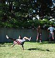 Street Acrobats in DC - 2013-06-07 - 11.JPG