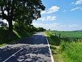 Struppener Straße Struppen Ebenheit (41397885865).jpg