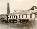 Sugar Mill, Matanzas Province, Cuba.jpg
