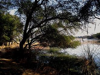 Sultanpur National Park - Sultanpur National Park at Sultanpur, Haryana.