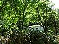 Sylvan Scenery at Jozankei - Near Sapporo - Hokkaido - Japan (47992643173).jpg