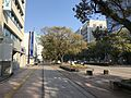Takachiho-dori Street 20170319.jpg