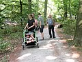 Taking a walk in the beech park (3).jpg