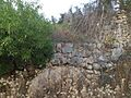 Tal-Qadi Temple, Naxxar 29.jpg