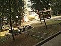 Taman.jpg