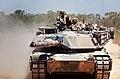 Tank Top (9823435696).jpg