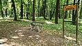 Tarnowskie Góry Park Miejski Skrót Gwarków.jpg