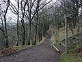 Teign valley footpath near Sharp Tor rock, Castle Drogo - geograph.org.uk - 64090.jpg