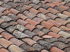 California Hall - Spanish roofing tiles (tejas)