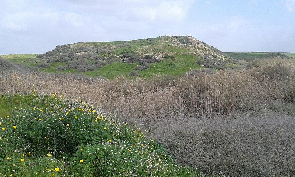 Tel A-Sheria 5