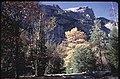 Tenaya Canyon trail scene (f75644017df74203840f20aa91ce67af).jpg