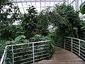 Teplice, skleník Tropicana, tropický skleník (05).jpg