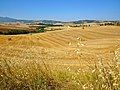 Terre di Siena1.jpg