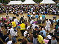 Thai Royal Ploughing Ceremony 2009 - rice finding 6.jpg