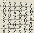 The American Museum journal (c1900-(1918)) (17540707973).jpg
