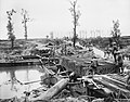 The Battle of Passchendaele, July-november 1917 Q5859.jpg